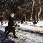Hundeschule Grundkurs